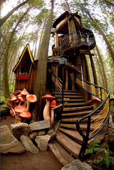maison dans l'arbre 03.jpg