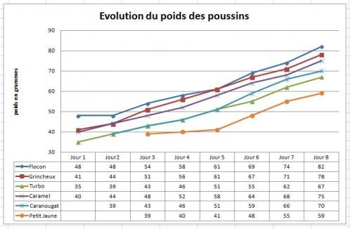 Graphique poids des poussins.JPG