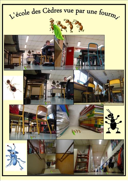 Poster Ecole vue par une fourmi 02.jpg