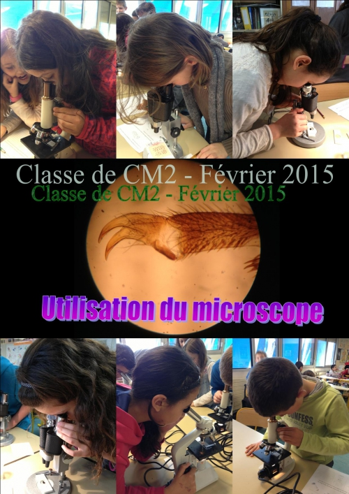 Microscope 02.jpg