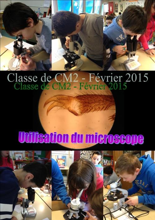 Microscope 03.jpg