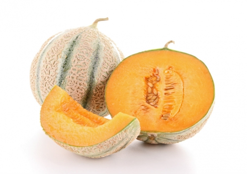 melon 01.jpg