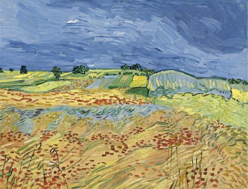 Vincent van Gogh (1853-1890) Wheat Fields 1890.jpg