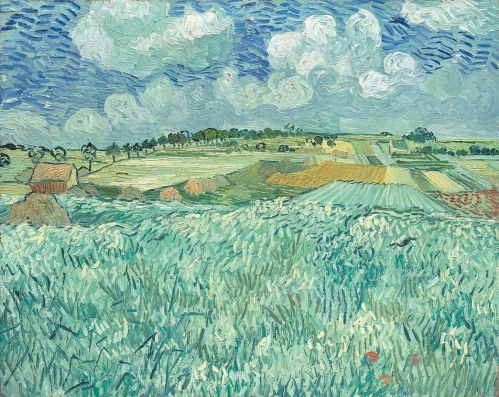 Vincent van Gogh (1853-1890) Plain near Auvers 1890.jpg