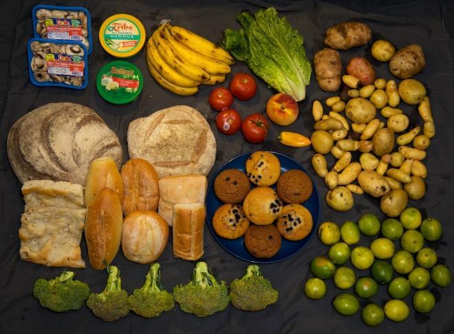Alimentation diverse 01.jpg