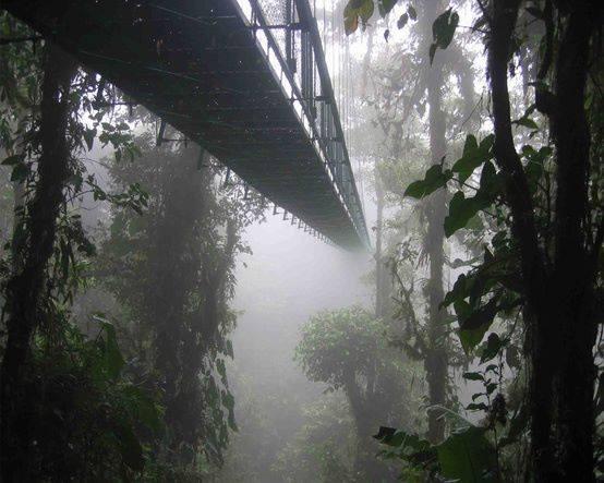 Pont Santa Elena Costa Rica.jpg