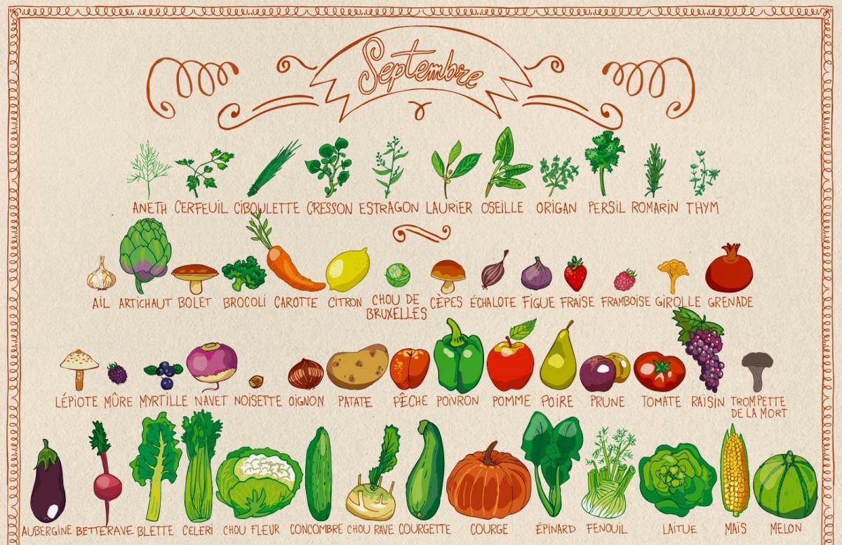 Septembre - Fruits et légumes de saison 02.jpg
