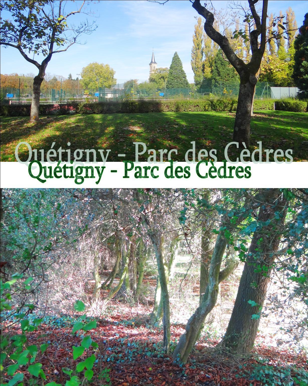 Course d'Orientation 2017 12.jpg