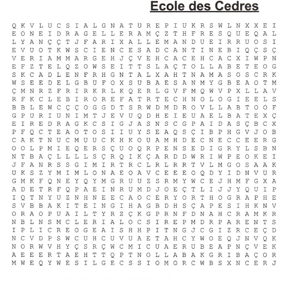 Grille Ecole les Cèdres.jpg