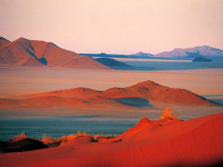 e818dd43d6fbc8a000ffe744737b3882--namib-desert-nature-reserve.jpg