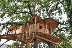 arbre cabane 02.jpg