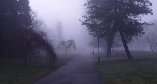 Quetigny - Parc du Cromois - Matin brumeux - Janvier 2013