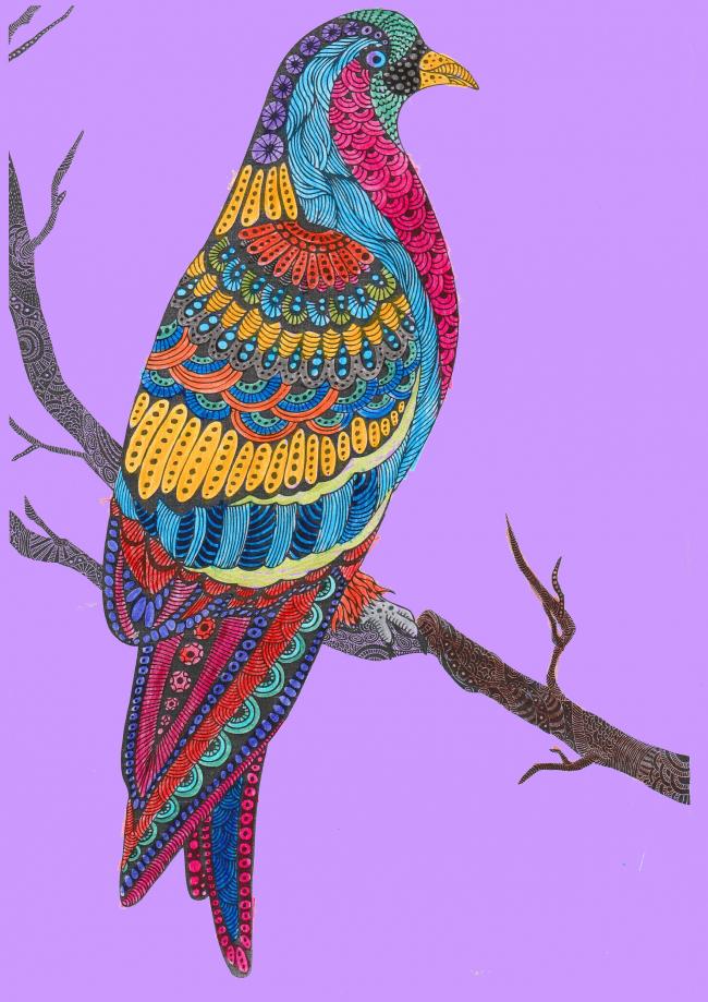 Coloriage - Oiseau - Yann - CM2