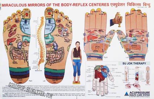 BB Miraculous mirrors of the body-reflex centeres.jpg