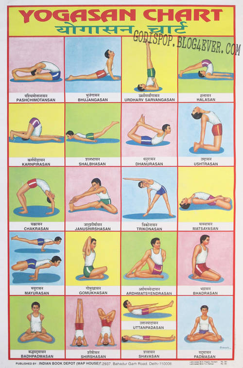 CC Yogasan chart ibd.jpg