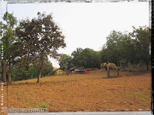 Small IMG_5381 Dhurva village.jpg