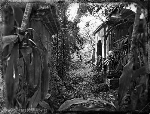 Small 26 IMG_7051 Park cemetery.jpg