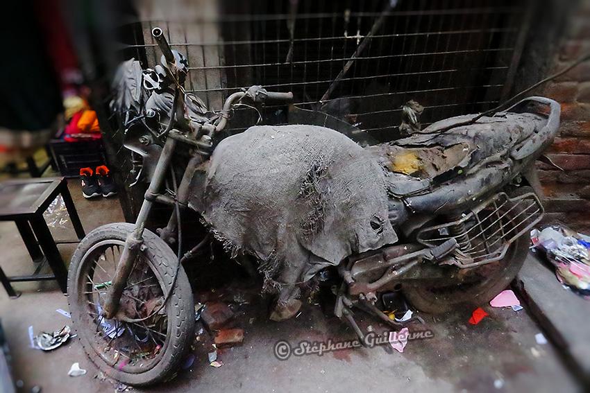 IMG_9525 Vicky moto Small.jpg