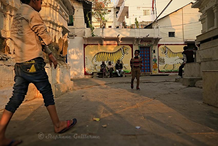 IMG_0556 Kids et tigres peints Udaipur Small.jpg