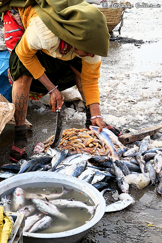 IMG_1296 Marché aux poissons Vanakbara Small.jpg