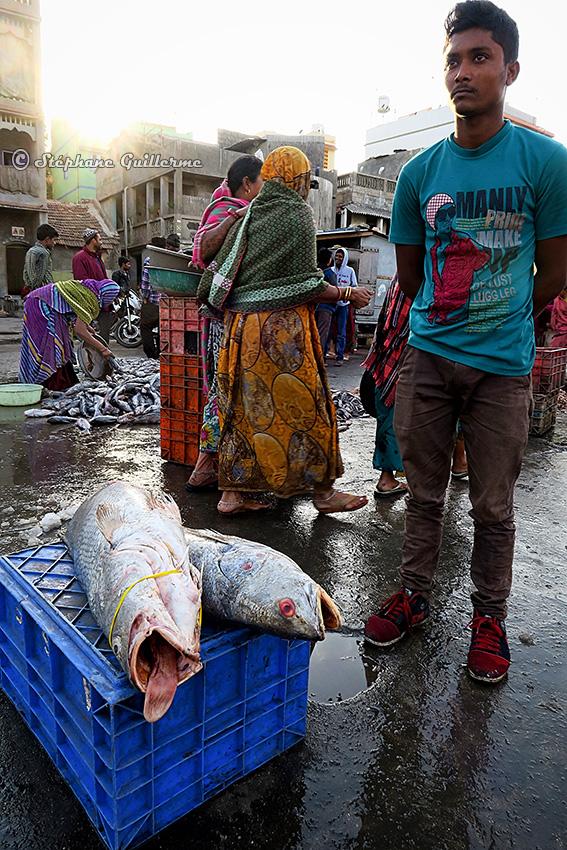 IMG_1319 Marché aux poissons Vanakbara Small.jpg