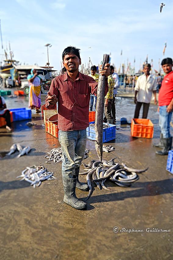 IMG_1421 Marché aux poissons Vanakbara Small.JPG