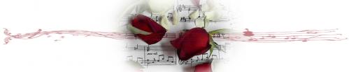 musique9.png