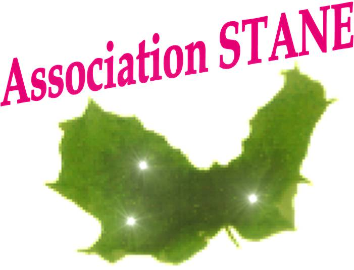 https://static.blog4ever.com/2012/11/720911/Association-Stane-Logo.jpg