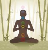 10421582-illustration-representant-la-silhouette-d-39-une-personne-assise-en-position-du-lotus-avec-les-sept-[1].jpg