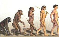 evolution-de-l-homme3.jpg