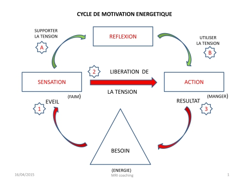 Cycle de motivation énergétique.jpg