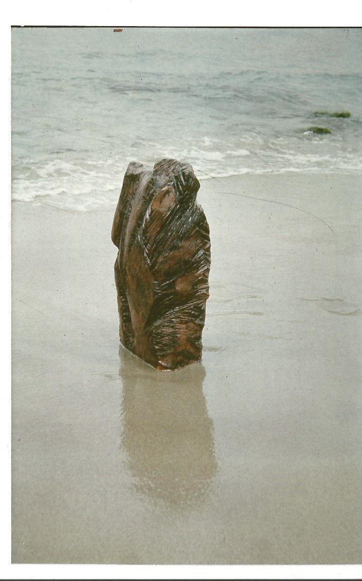 Bois fossilisé