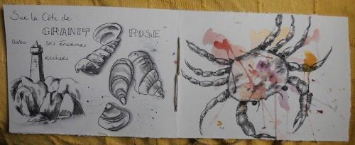 Carnet de la mer (2).JPG