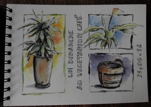 Végétarium café.JPG