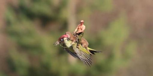 Poutine-cheval-sur-belette-elle-m-me-cheval-sur-pivert.jpg