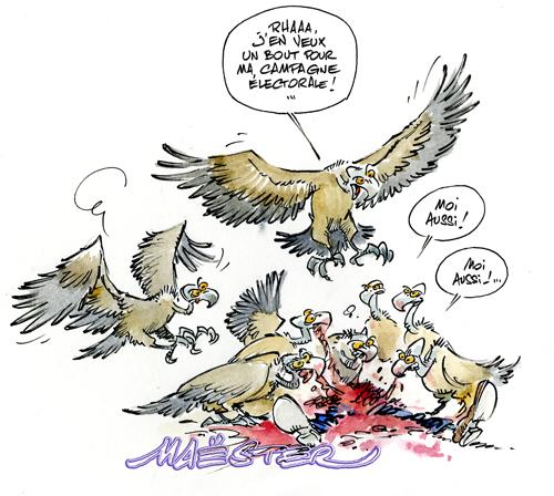 vautour récupération.jpg