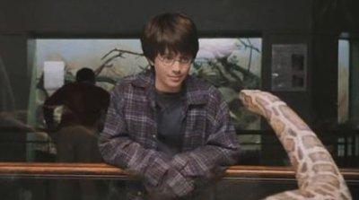 HarryPotter-vitre.jpg