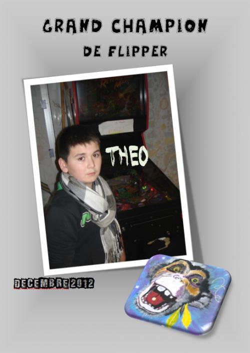 Théo, champion de flipper-Décembre 2012