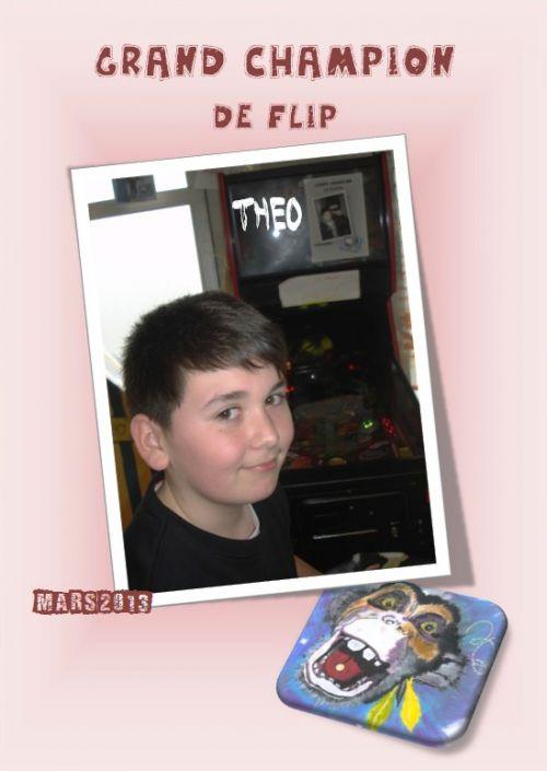 Théo-Champion de Flipper-Mars 2013