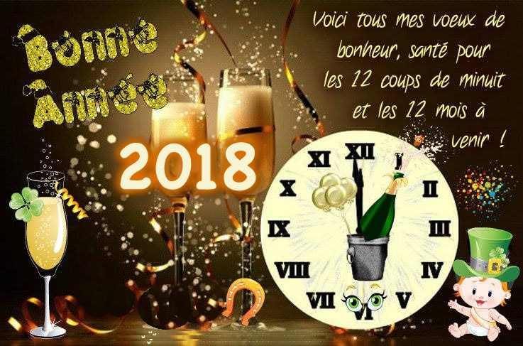 voeux année 2018.jpg