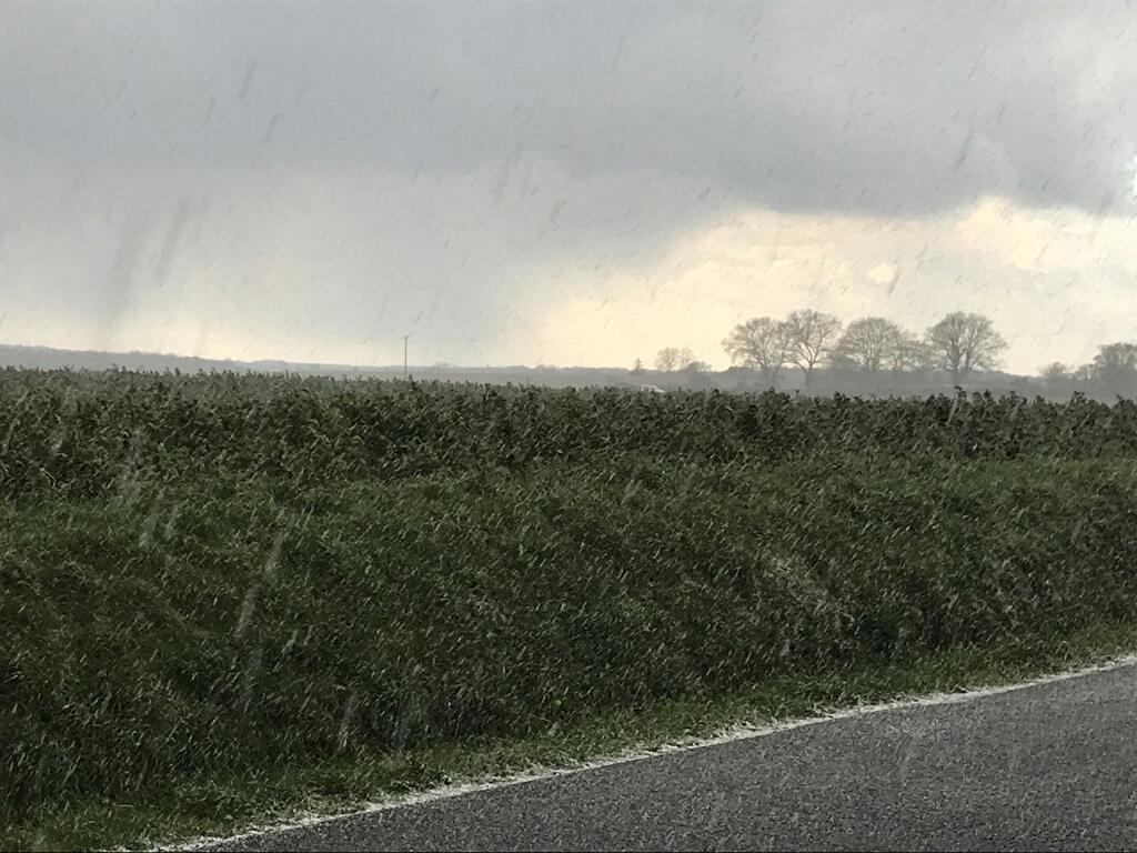 Le déluge de grêle