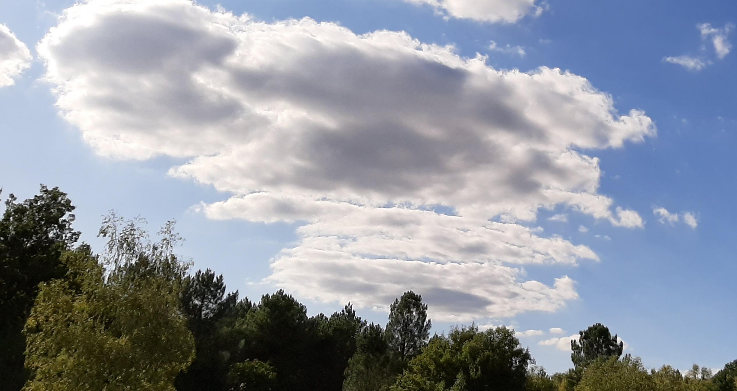 Pas de photo de groupe au départ, à force bavarder j'ai zappé, en remplacement la photo du ciel pendant cette sortie
