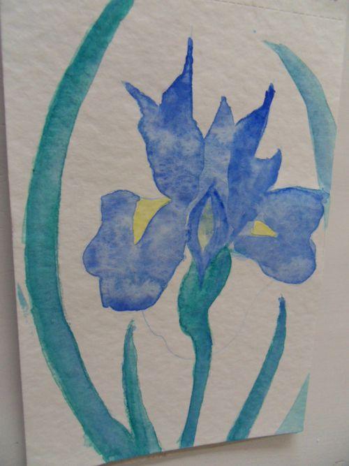 Iris, inspiré du Japon au fil des saisons