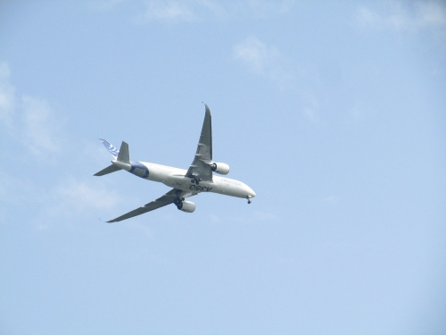 A350 001.JPG