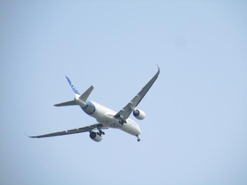 A350 002.JPG