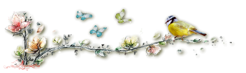 https://static.blog4ever.com/2013/01/725863/Barre-s--paration-branche-fleurs.png
