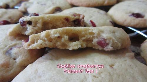 2014-02-27 cookies cranberries (28) titre.jpg