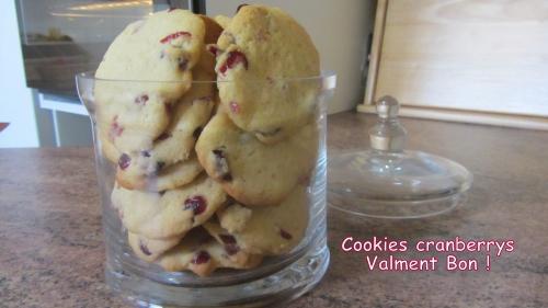 2014-02-27 cookies cranberries (32) titre.jpg