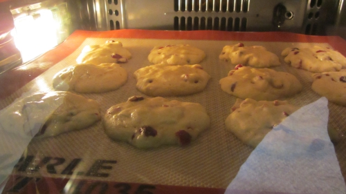 2014-02-27 cookies cranberries (21).JPG