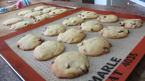 2014-02-27 cookies cranberries (24).JPG